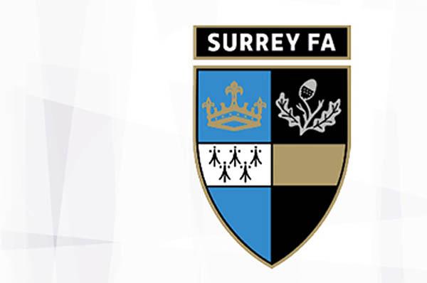 Meadowbank Park Surrey FA